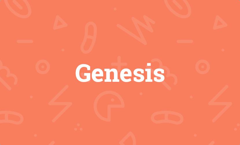 Genesis – Meine Erfahrungen mit dem WordPress-Framework
